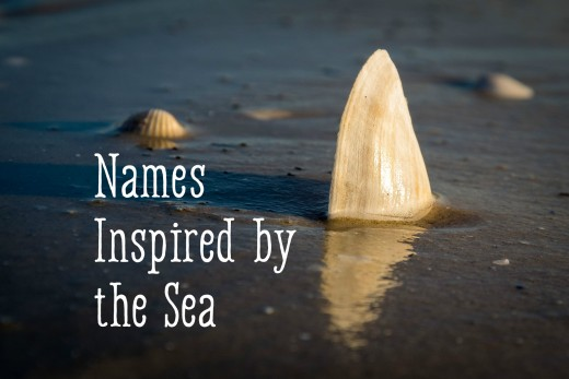 Baby names inspired by the ocean wehavekids source negle Images