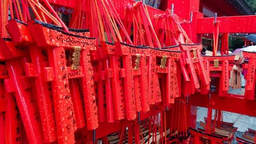 Very wet torii offerings.