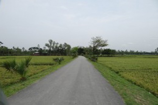 This is the entrance road of Uzgram.