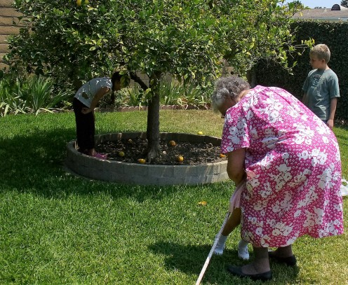 I titled this photo, Lemons and love!  This is my Great Aunt Betty, who passed away a couple of months ago.  I am heartbroken at that loss as well.  Here she is hugging one of her grandchildren, and others picking lemons off of her famous lemon tree.