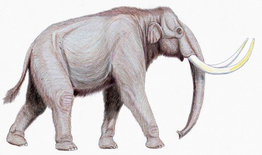 An artist's reconstruction of a steppe mammoth.  Some members of this species have been estimated to weigh nearly 16 tons.