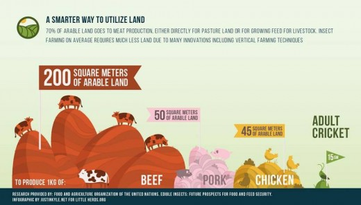 As expected, the land needed to harvest a kg of crickets is much lower than needed to harvest a kg of beef.