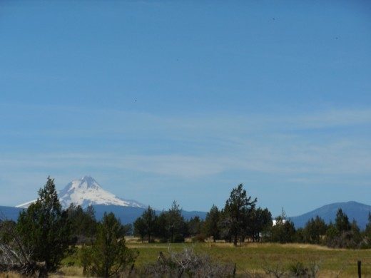 View of Mt. Hood from the bus.