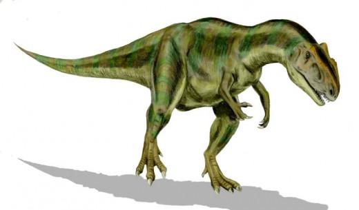 Allsosaurus Dinosaur Reconstruction By Nobu Tamura CC BY-SA 2.5