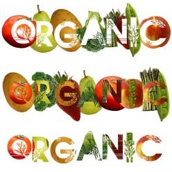 Organic Food Quiz