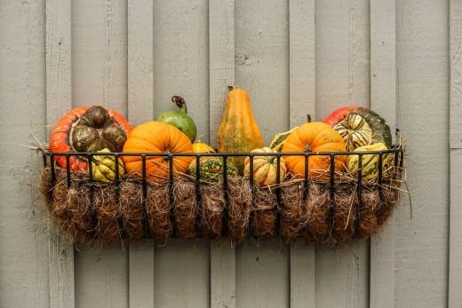 Fall bounties