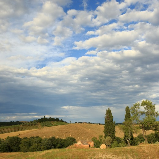 Tuscan countryside in June after the wheat harvest, Tuscany, Central Italy.