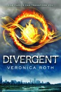 5 Books Like Divergent