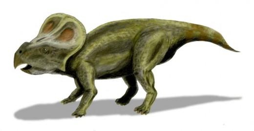 Protoceratops Dinosaur By Nobu Tamura CC BY-SA 2.5