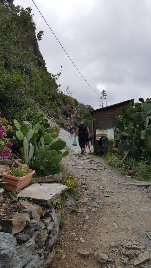 hiking trail approaching Vernazza (from Corniglia)