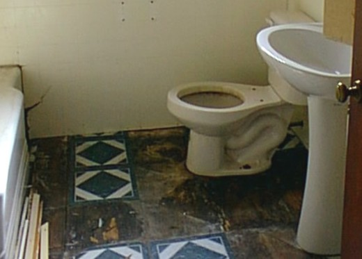 The bathroom had to be gutted including the cracked tub and the sub-floor and tile.