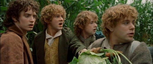 "left to right: Frodo Baggins, Meriadoc ""Merry"" Brandybuck, Peregrin ""Pippin"" Took, and Samwise ""Sam"" Gamgee"