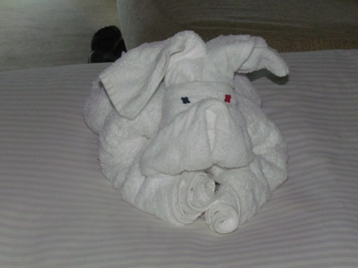 Upon our return to our stateroom, this new towel display awaited us.