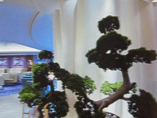 A display of a plant within the interior of the Epic.