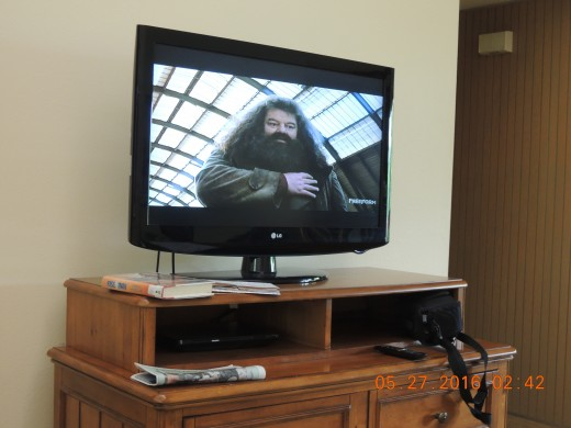 The TV in the living room.  There is also one in the master bedroom .