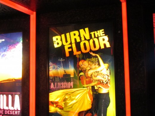 "Burn the Floor, was an amazing performance we saw in the Epic Theater. This show originated from Broadway with dancers from ""Dancing With the Stars."" This is a must see."