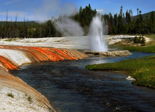 Cliff geyser and Firehole river at Black Sand Basin in Upper Geyser Basin in Yellowstone National Park