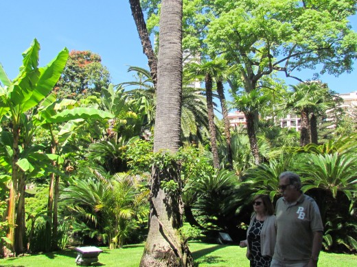 This is the beautiful garden that near Hotel De Paris.