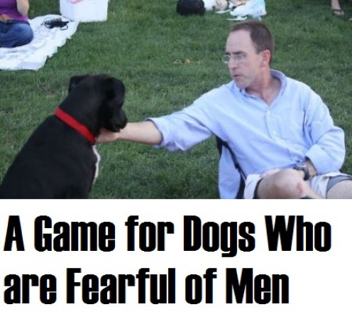 A Game to Help Dogs That Are Fearful of Men