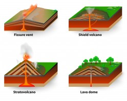 Why Tectonic Processes Produce a Variety of Contrasting Landscapes