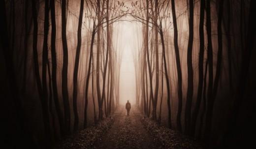 Graven Path
