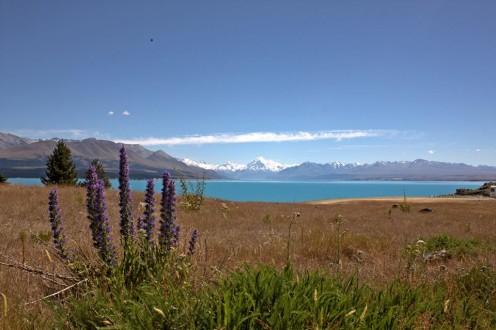 Lake Pukaki - In the South Island's Dark Sky Reserve