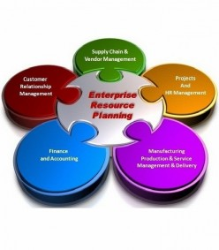 Implementing Enterprise Resource Planning (ERP)