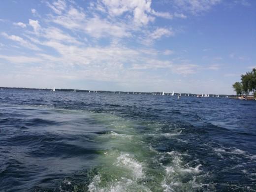 Regatta on Lake Minnetonka