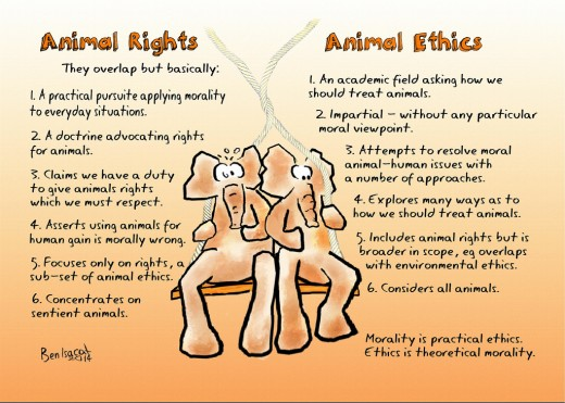 Animal rights and animal ethics