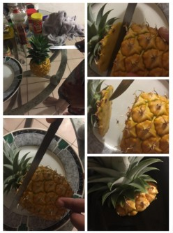 The Captain's Pineapples (slice&potted)