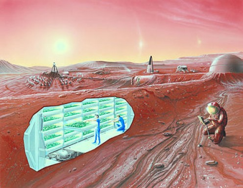 Artist's conception of life on Mars