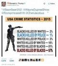 Blacks Should Worry More About Blacks Killing Blacks,Than The Police Killing Blacks Yes Or No?