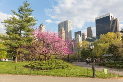 Be sure to spend some time exploring New York City while you're in the city for the US Open.