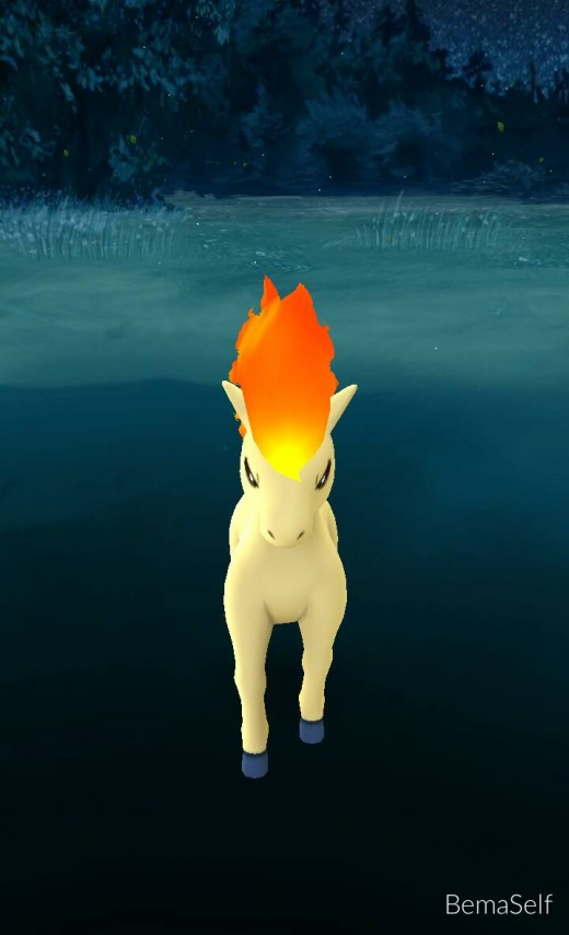 "A ""Ponyta"" Pokemon that galloped right up to my house while I was using a lure. Definitely a rare but welcome find! Ponyta has always been one of my favorites!"