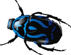 The rare Blue Beetle was the alleged source of the break-up of the Caldwell reunion