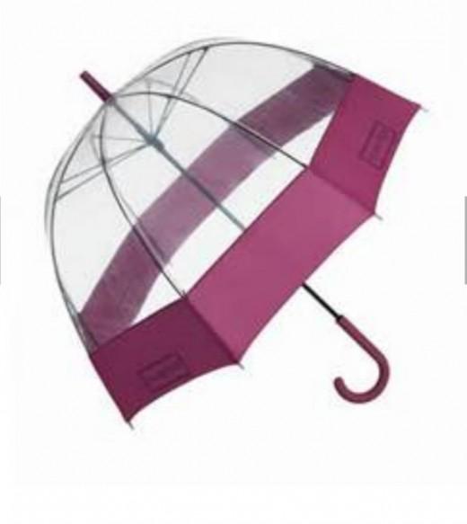Transparent Umbrella with border