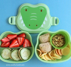 Pack a Back to School Lunch Box Your Kids Will Eat!