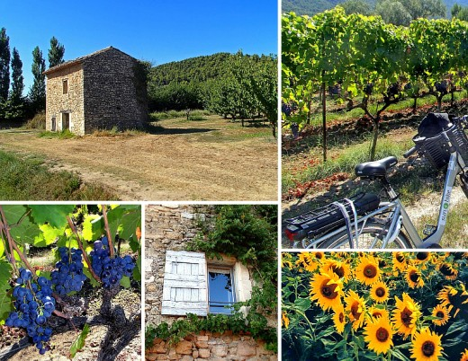 Clockwise from top left: stone farmhouse; vineyard rest stop; bright sunflowers; room with a view; black grapes at Domaine de Marie winery.