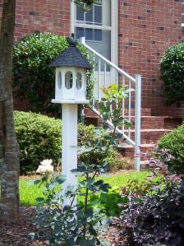 Create a bird friendly yard!