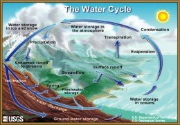 The water cycle probably best represents our life cycle - with 'rain' being birth; and 'evaporation' being death of the body as the non-physical, 'soul' part of us continues on.