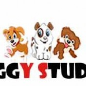 Waggy Studios profile image