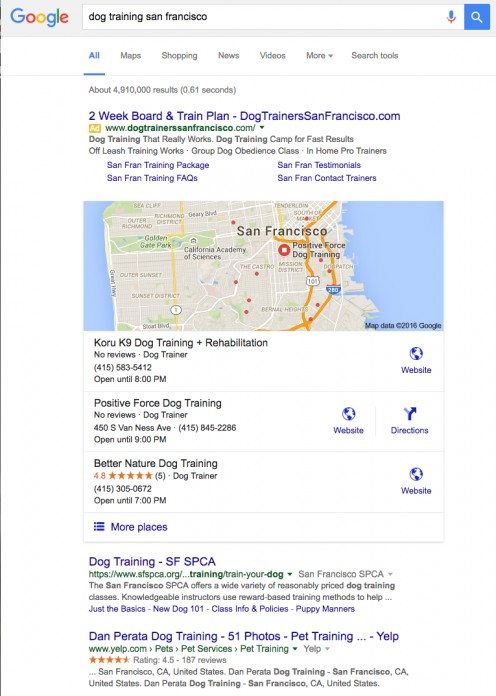 Here's an example of what pet parents will see when they search for a local dog trainer in Google.