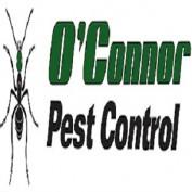 OConnorPCVisalia profile image