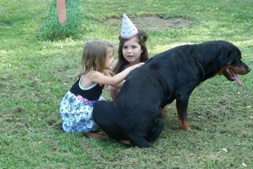 My great granddaughters, Braelie and Paisley loving up their dog Willow at Paisley's 3rd birthday party.