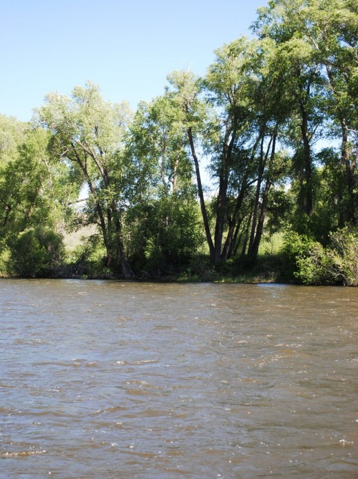 This stretch of the Colorado River, part of the Kemp Breeze State Wildlife Area, is one of the most popular fishing spots in the state.