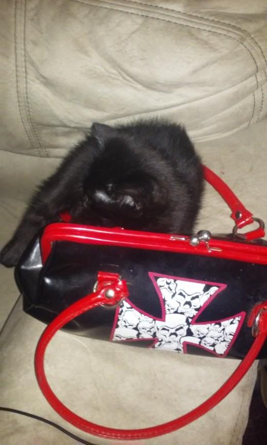 Rat boy on my purse. He's so metal.