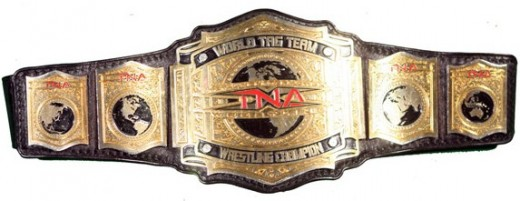 The Current TNA World Tag Team Belt. There are two of these right now.