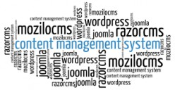 Web content management systems are effective only when the processes are in sync