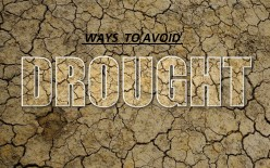 10 Solutions to the Drought Problems in India