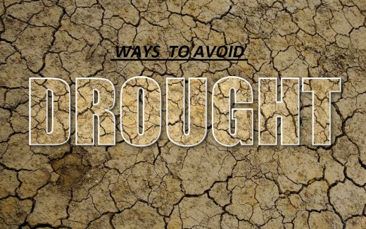 Ways to Avoid Drought